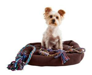 Dog Bed + 2 Rope Toys £6.99 (down from £19.99) @ Argos