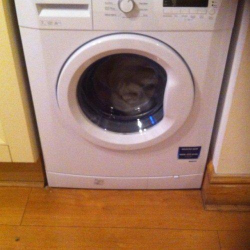Beko WM 74135 W 7kg A++ Washing Machine £179.99 in Currys