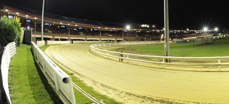 Peterborough dog racing £2