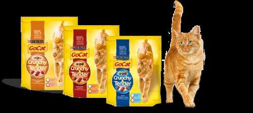Free GoCat Crunchy and Tender Sample