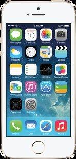 iphone 5s £11.99 p/m plus £334.99
