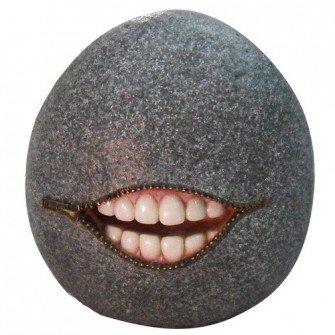 Non Sense Stone with Teeth Grey Small by Vivid Arts £10.95 @ Millracegardencentre