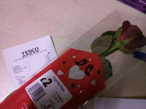 Tesco Single Red Rose £1.00 instore