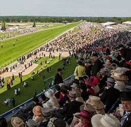 Free Ascot Grandstand Tickets - Grandstand Admission1 - 4 Tickets: Maximum 4 Tickets Per Person, Print at Home only