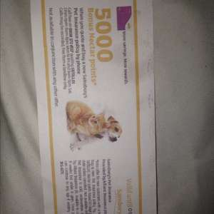 5000 nectar points and double nectar points when you take pet insurance with sainsburys!!