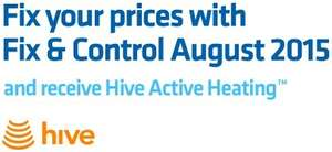 Free hive installation worth £199 when taking out British gas fixed gas and electricity plan