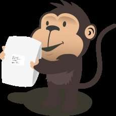 Parcel Monkey City Link Next Day Delivery 10kg £6.75 (£8.10 VAT)