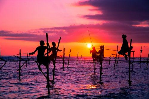 10 Nights Sri Lanka + Abu Dhabi - Accommodation & Flights for only £385 @ Budgetair, Ryanair & Trivago