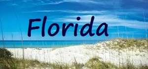 Florida Return Flights £168.98 with 20kg luggage@ Thomson  from Birmingham, Gatwick  or Manchester