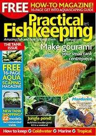 6 months subscription to PRACTICAL FISHKEEPING MAGAZINE and FREE FLUVAL U2 FILTER worth £44 (Plus possibly £9 Quidco) £25 @ Great Magazines