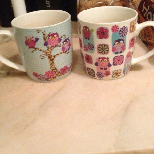 Tesco set of 4 owl mugs £3