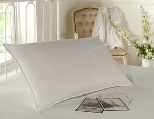 Silent night memory foam core pillow £49.99 reduced to only £5.99 + P&P @ The Bedding Company