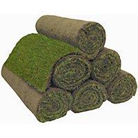 Turf £1.70 per roll @ Homebase (Instore Maidenhead )