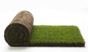 B&Q turf reduced to £1 a roll (instore at Peterborough)