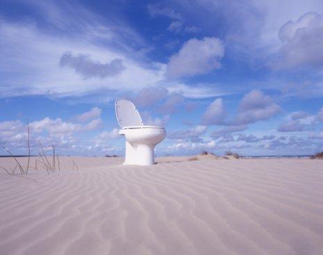 Decorated Toilet Seat £13.99 at Aldi