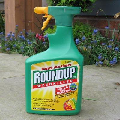 Roundup weedkiller 1 litre @ Morrisons £2.48