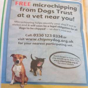 FREE Microchipping from Dogs Trust