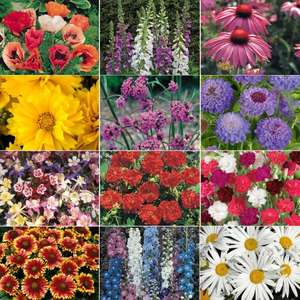 72 Perennials Collection with code TNE387Z Was 76.83 now £14.94 @ Thompson & Morgan