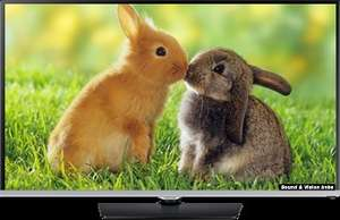 "Samsung 50"" UE50H5000 Freeview HD - Richer Sounds 5yr Warranty £499"
