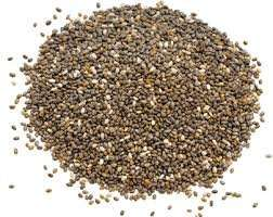 11 Packs of seeds/Herbs-Free! @M&G. Sponsors of the RHS Chelsea Flower Show