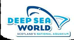 Free child ticket with one paying adult at Deep Sea world Edinburgh. - £13.50
