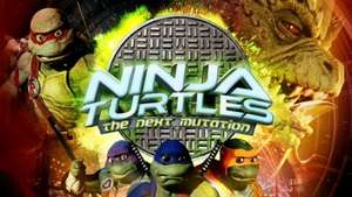 Ninja turtles the next mutation tv series @ poundland £1.00 per DVD - £13 for full set