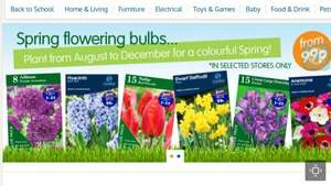 Tulip flower bulbs 10pk 99p @ B&M