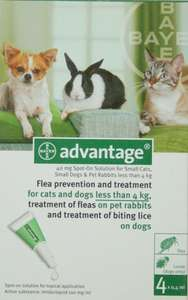 Advantage flea treatment trick. Same price for 10 times the amount of treatment £12.01 delivered @ Amazon and sold by Black Cat Medicines.