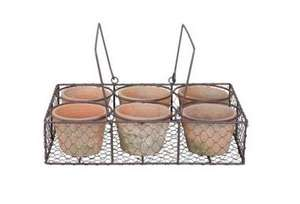 6 aged terracotta pots in wire basket £7.00 at tesco direct free c&c