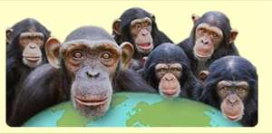 MONKEY WORLD Free Entry on October 31st 2014 for All Visitors  in Full Halloween Fancy Dress at Monkey World!