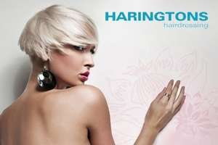 Free hair cut - Haringtons Hair Salon.