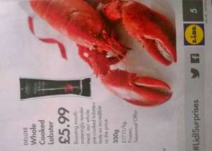 Whole cooked lobster £5.99, whole cooked crab £2.99, 12 scallops £3.99, prawn ring £3.99, etc. at Lidl from 30th October