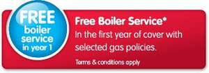 Gas Boiler Breakdown Cover with an Annual Boiler Service £24 (£8.25 after £15.75 TCB) @ Home Serve