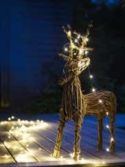 25% off Cox and Cox - 25XMAS - Loads of Gorgeous Christmas Decorations!