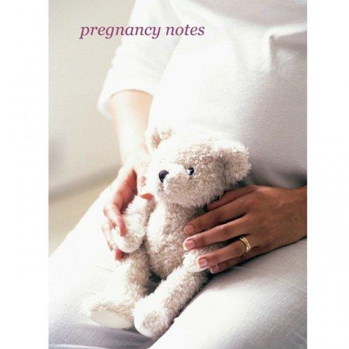 Pregnancy notes journal £3 delivered jojo
