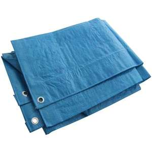 AM TECH BLUE TARPAULIN 6' X 4' £1.35 @ Amazon Dispatched from and sold by mspackaging (Free delivery over £10 Add on item)