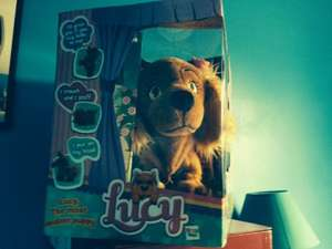Lucy the dog £4.99 @ B&M