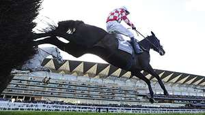Free ascot horse race on Valentine's Day
