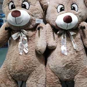 "5' 8"" Teddy bear £39.99 @ Home Bargains"