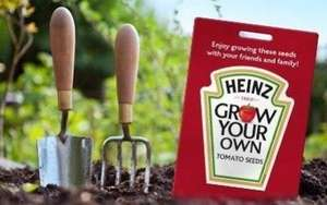 Free Packet of Heinz Tomato Seeds