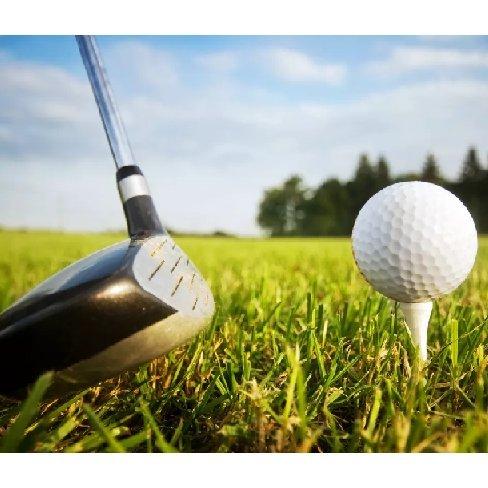 Free golf lessons worth £60 (Balls £4.20)