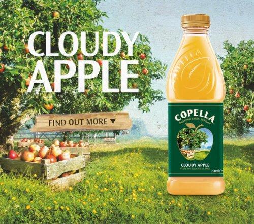 Copella 1.25L for 99p in 99p store
