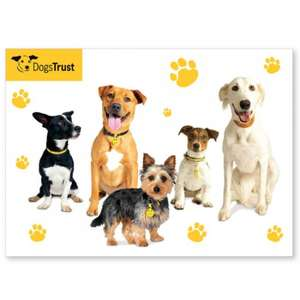 Dogs Trust Store Sale -  Aga Biscuit Tin £5.20 (plus £4.95 delivery per order so buy more!)  Lots of items!