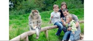 Monkey forest family ticket for £14 @ hallam fm