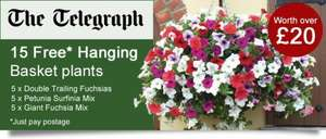 15 Free Hanging Basket Plants worth £23.00 @ Telegraph Plants. Just pay Postage £5.65