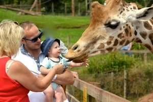 ~Half Term Family Fun~  Half Price Family Ticket South Lakes Safari Zoo Only £15.50 (Was £31) @ Star Radio