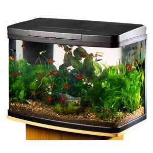 Love Fish Panorama Tank 40 Litre from £99 down to £55.30 @ pets at home