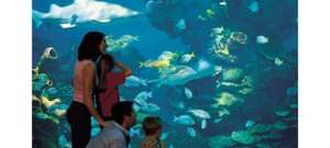 blue planet aquarium half price family ticket £27 @ Key 103 offers