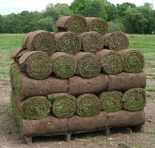 Rolls of turf B&Q 50p