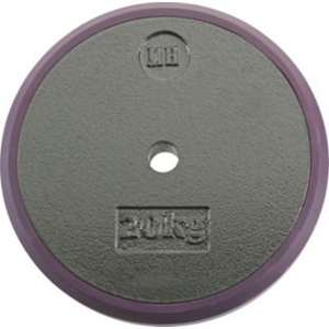 Men's Health Cast Iron Plates (20kg x 2) - £49.99 @ Argos